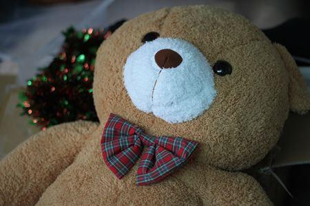 ตุ๊กตาหมีตัวใหญ่ ตุ๊กตาตัวใหญ่ ตุ๊กตาหมีตัวใหญ่ ราคาถูก ตุ๊กตาหมี ราคาถูก jinpiin