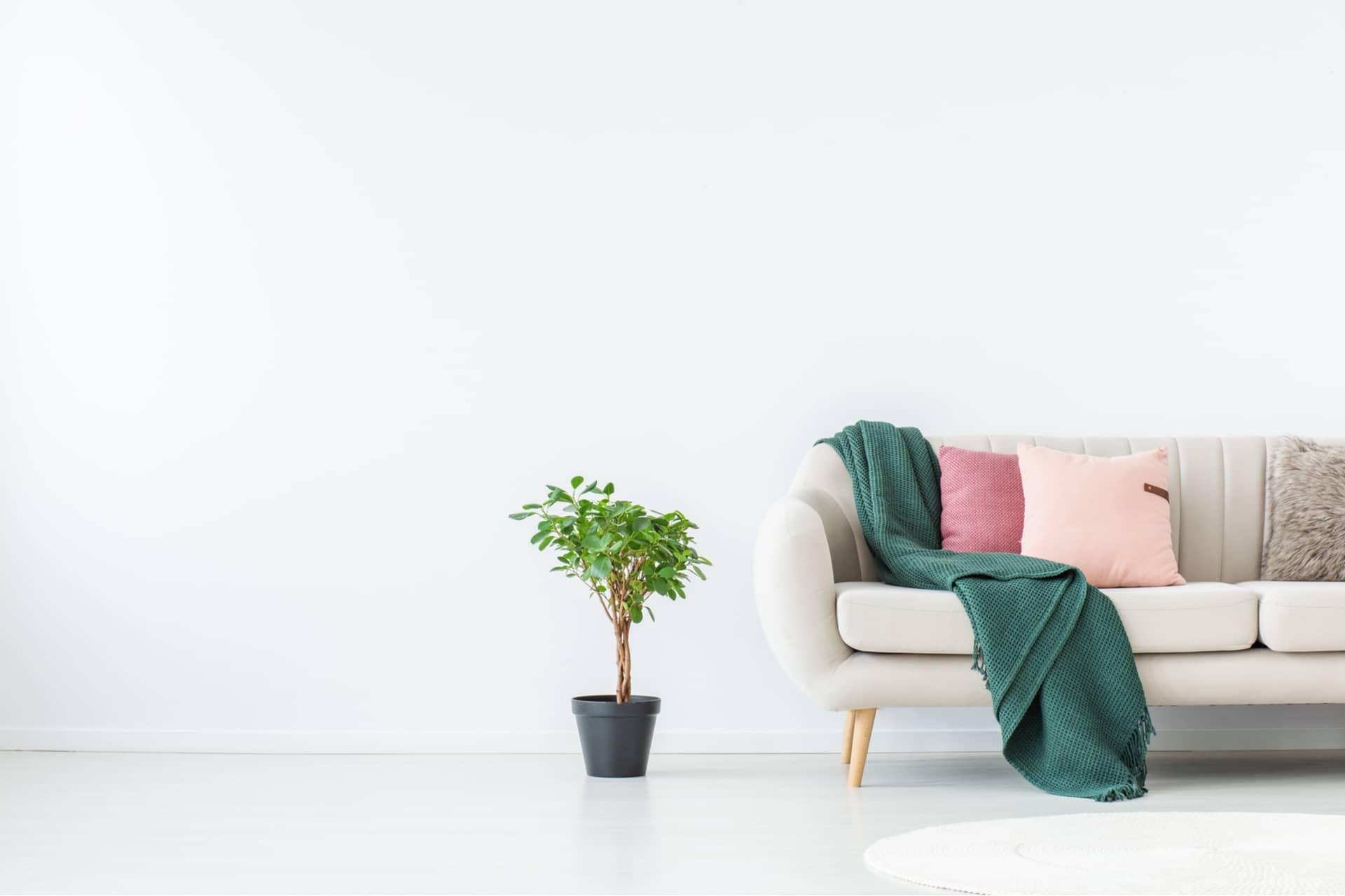 หมอนผ้าห่มบนโซฟา